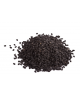 Bestel vandaag je Black seed conditioner van Sweet Sunnah en geniet morgen al van de natuurlijke bevochtigende en hydraterende i