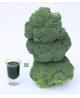 Bestel Direct biologische Tarwegras poeder van raw & organic