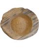 Bestel Camu Camu Poeder Raw & Organic online