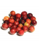 Camu Camu Poeder Raw & Organic