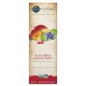Mykind Organics Plant IJzer & Organic Herbs Cranberry Lime (240 ml) Garden of Life